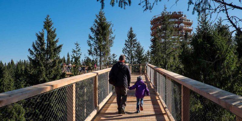 Chodník korunami Stromov Bachledova dolina